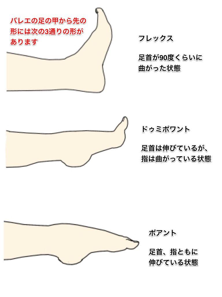 バレエの足の形