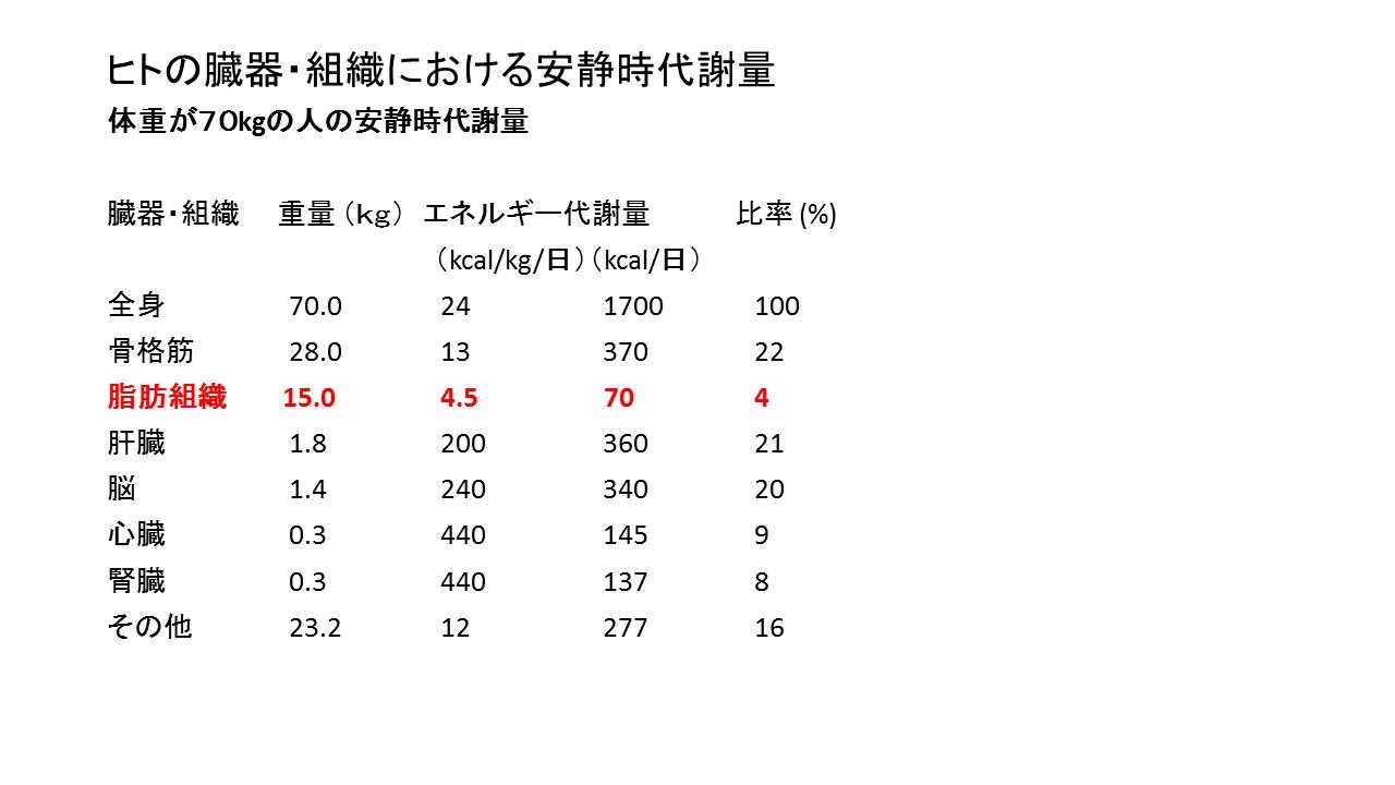 %e5%8a%a0%e9%bd%a2%e3%81%ab%e4%bc%b4%e3%81%86%e5%9f%ba%e7%a4%8e%e4%bb%a3%e8%ac%9d%e9%87%8f%e3%81%ae%e4%bd%8e%e4%b8%8b%e3%81%af%ef%bc%92
